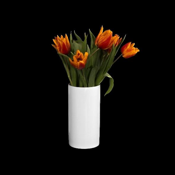 """Porzellanvase """"Röhre"""" 15 cm"""