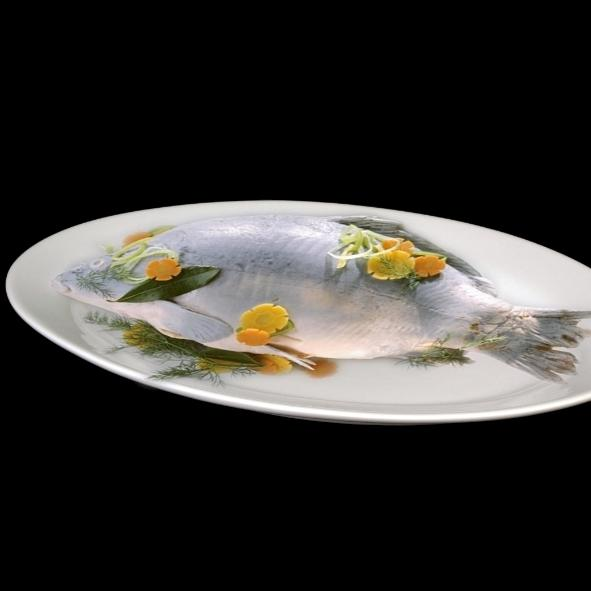 "Platte oval 50 x 36 cm ""Vital Level"" flach"