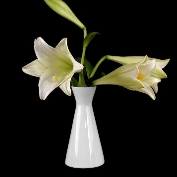 "Blumenvase 12 cm ""X-Form"""