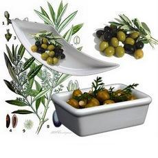 Oliven servieren