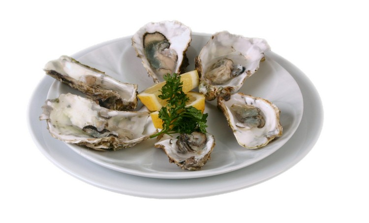 Serve oysters appealingly in white porcelain!