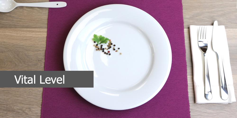 Geschirrserie Vital Level aus hochwertigem High Alumina Porzellan